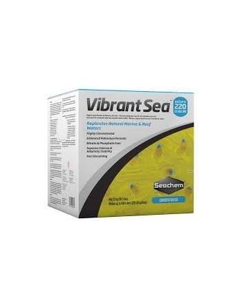 Vibrant Sea Salt
