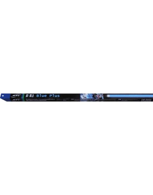 Blue Plus
