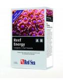 Reef Energy