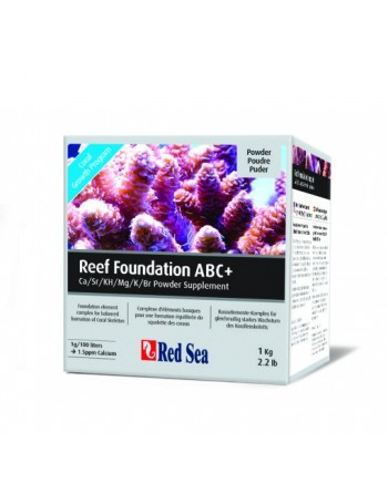 Reef Foundation